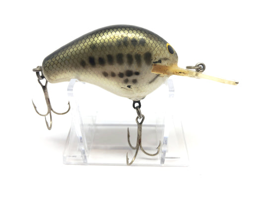 Bagley Diving B 2 DB2 LB4 Little Bass on White Color