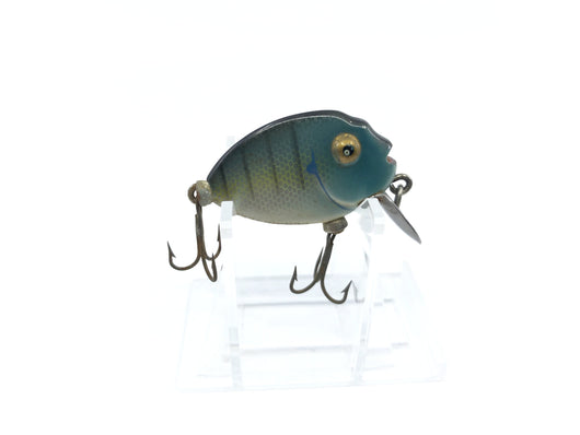 Heddon Tiny Punkinseed Bluegill Color