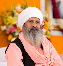 Sant Baljit Singh - NEW photo # 20170326NawanNagar-028
