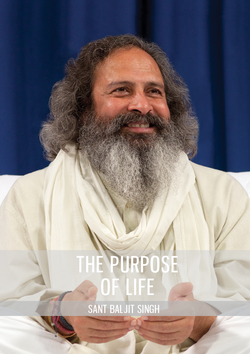 The Purpose of Life - DVD