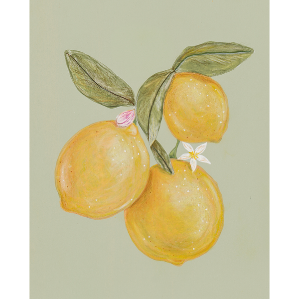 lemon bunch | 8 x 10