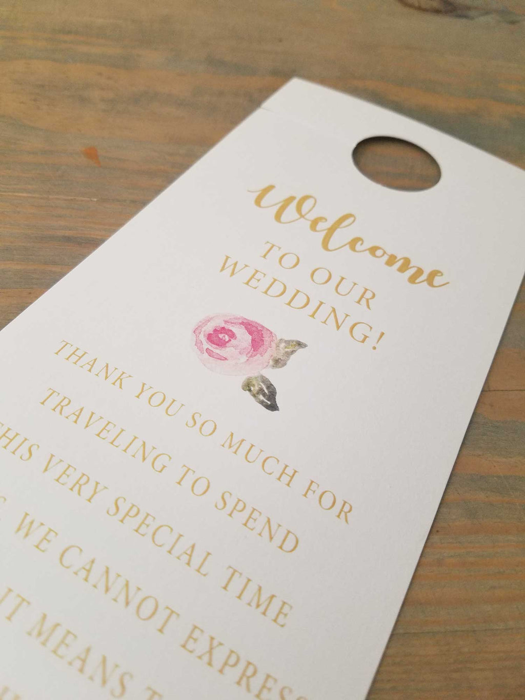 Blush Pink and Gold Do Not Disturb Door Hanger