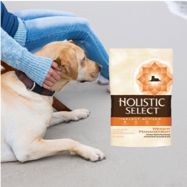 the best dog weight management food at great prices.