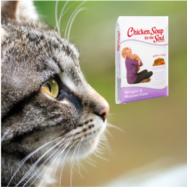 The best senior cat food at great prices.