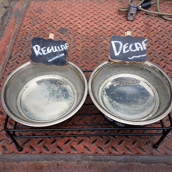 Dog Bowls & Feeders