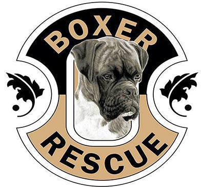 Buddy's Boxer Best plus Crate
