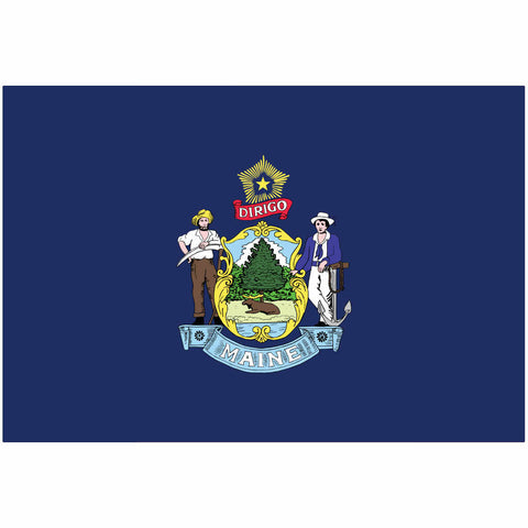 Maine State Flag for Putt-A-Round - Flag Only
