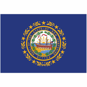 New Hampshire State Flag for Putt-A-Round - Flag Only