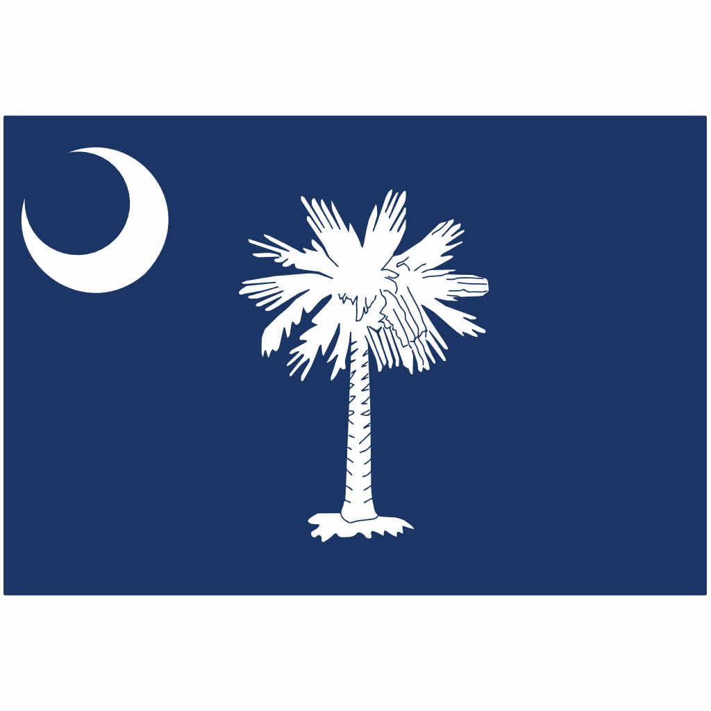 South Carolina State Flag for Putt-A-Round - Flag Only