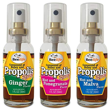 Beelife Flavored Propolis Spray 1fl oz (30ml) - Spray Propolis