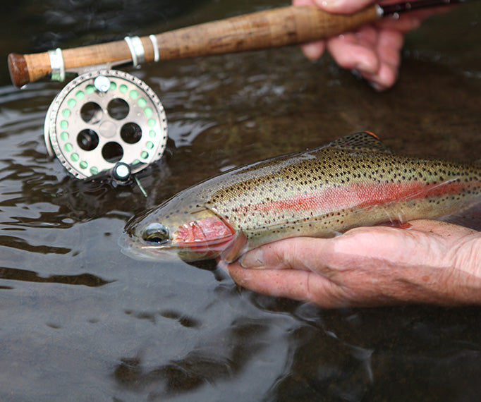 essential Flyfisher Fly Rods and Reels