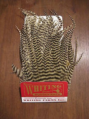 Whiting Bugger Hackle Pack Pack Australia