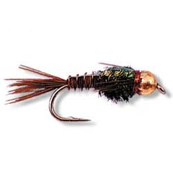 Copper B/H Flashback Pheasant tail X 6 Australia