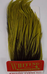 Whiting Woolly Bugger Hackle Pack