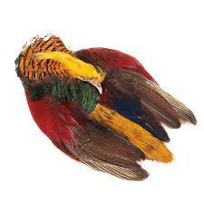 Golden Pheasant Whole Skin - Wapsi Australia