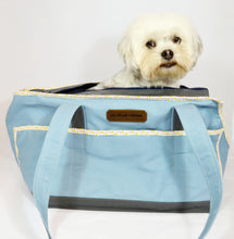 Sky Blue/Grey/Triangles Wally Tote