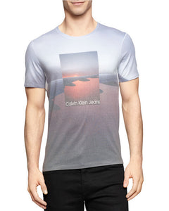 Calvin Klein Jeans Gray Modern Fit Plane Sublimation T-Shirt Large