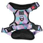 Big & Little Dogs Pastel Dreams All Rounder Harness