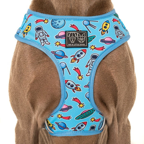 Big & Little Dogs Out of This World Adjustable Harness