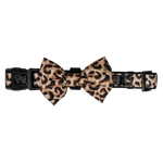 Big & Little Dogs Luxurious Leopard Collar & Bow Tie