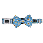 Big & Little Dogs Lazy Daisy Collar & Bow Tie