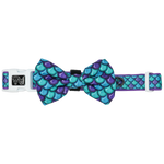 Big & Little Dogs Scaled Back Collar & Bow Tie