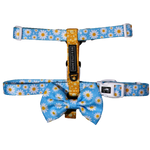 Big & Little Dogs Lazy Daisy Strap Harness