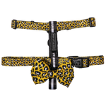 Big & Little Dogs Wild Thing Strap Harness