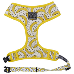 Big & Little Dogs Classic Print Harness: Going Bananas-DoggyTopia