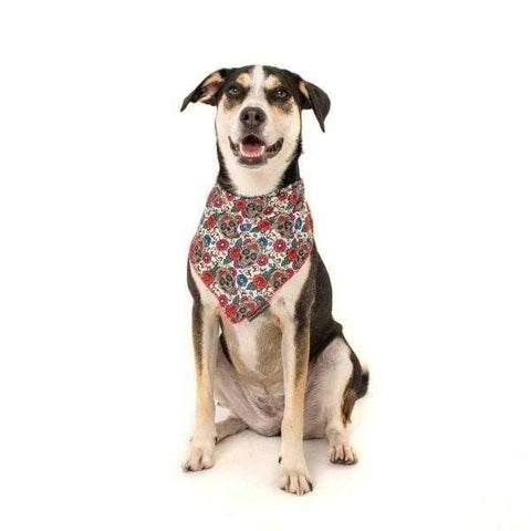 Image of Big & Little Dogs Day of the Dead Bandana-DoggyTopia