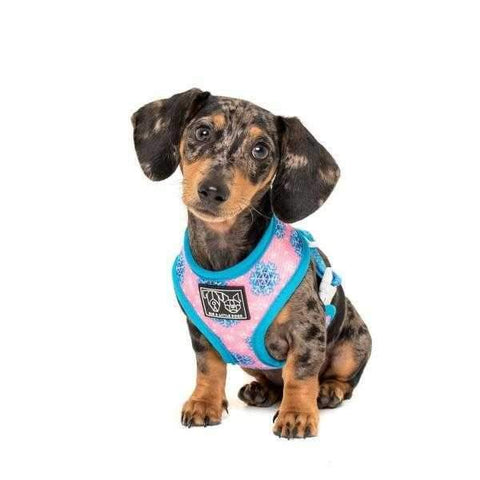 Big & Little Dogs Every Day I'm Waddlin' Reversible Harness-DoggyTopia