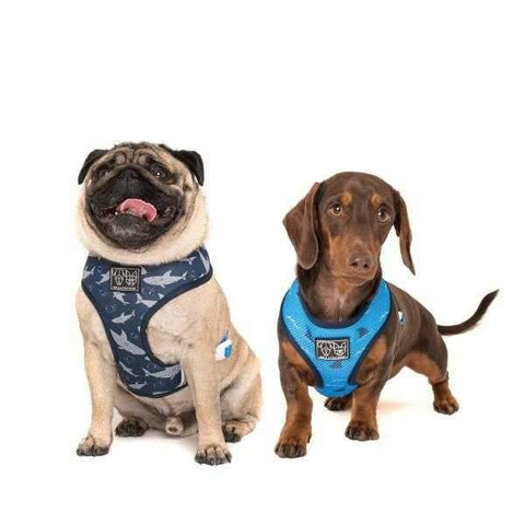 Big & Little Dogs Fintastic Reversible Harness-DoggyTopia