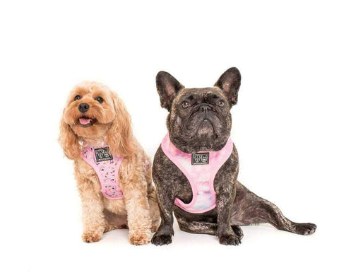 Big & Little Dogs For Flocks Sake Reversible Harness-DoggyTopia