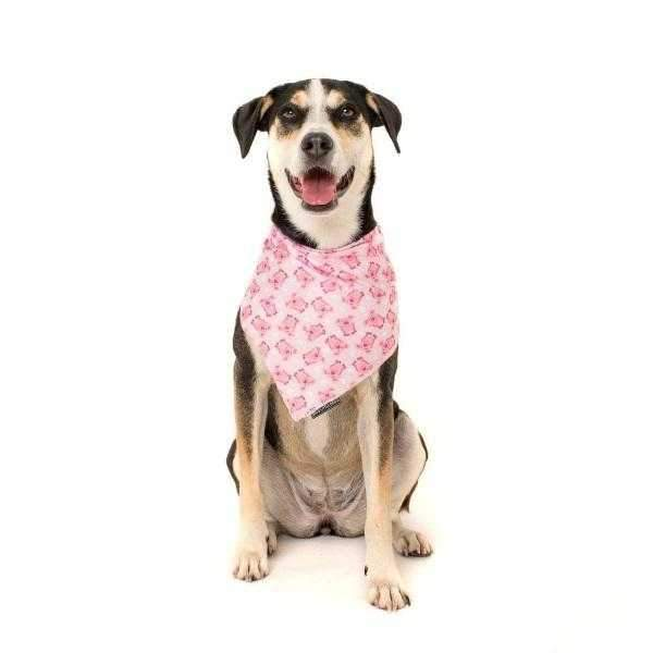 Big & Little Dogs Gettin' Piggy With It Bandana-DoggyTopia