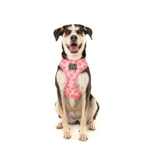 Big & Little Dogs Gettin' Piggy With It Reversible Harness-DoggyTopia