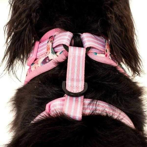 Big & Little Dogs I'm a Succa for You Adjustable Harness-DoggyTopia
