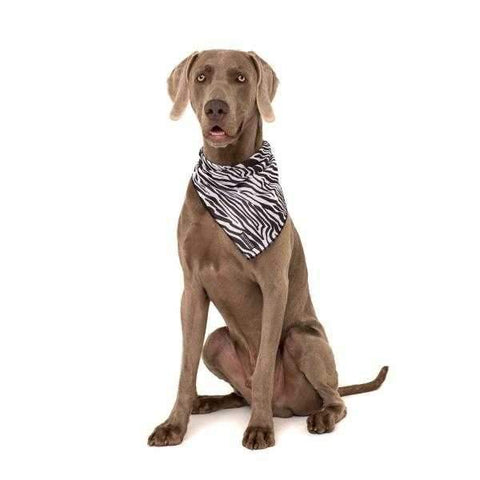 Big & Little Dogs Into The Wild Bandana-DoggyTopia