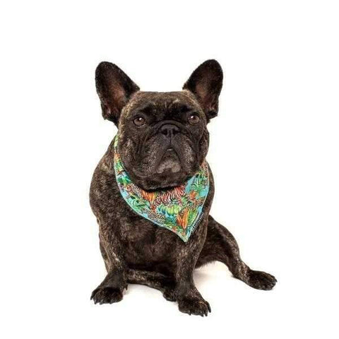Big & Little Dogs King of the Jungle Bandana-DoggyTopia