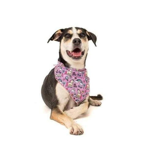 Big & Little Dogs One of a Kind Bandana-DoggyTopia