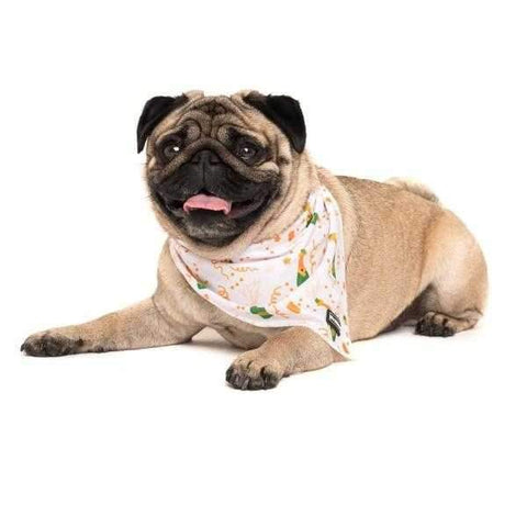 Big & Little Dogs Poppin' Bottles Bandana-DoggyTopia