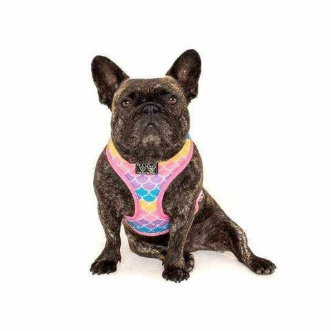 Big & Little Dogs Sea Life Reversible Harness-DoggyTopia