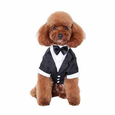 Image of Black Tuxedo Small - Medium Dogs-DoggyTopia