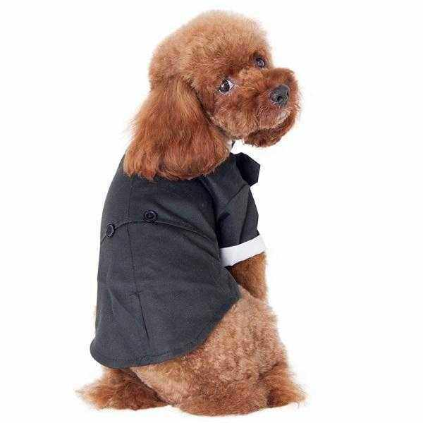Black Tuxedo Small - Medium Dogs-DoggyTopia