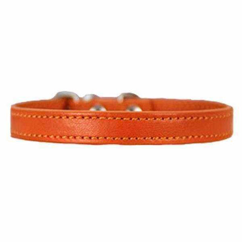 Buckle Dog Collar-DoggyTopia