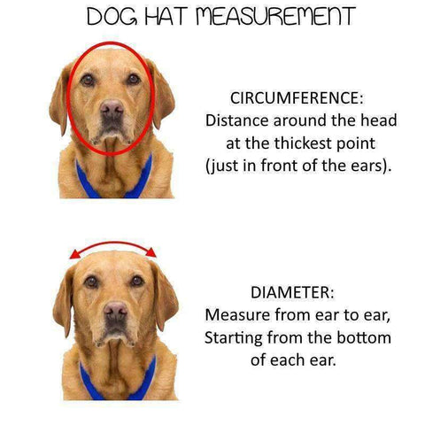 Image of Dog Hat Brown Stripe-DoggyTopia