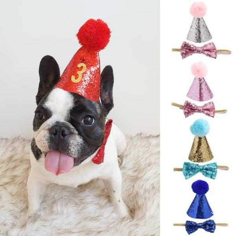 Dog Party Hat & Bow Tie Collar - Custom Age-DoggyTopia