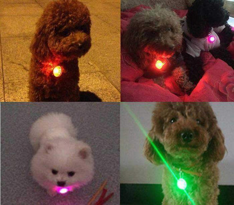 LED Dog Pendant-DoggyTopia