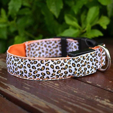LED Nylon Leopard Glow Collar-DoggyTopia