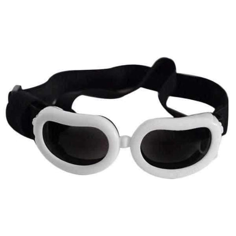 Image of Small Dog Goggles-DoggyTopia