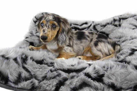 T&S Nordic Butterfly Dog Bed-DoggyTopia